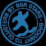 bsr cluster conferencia de clusters em estugarda